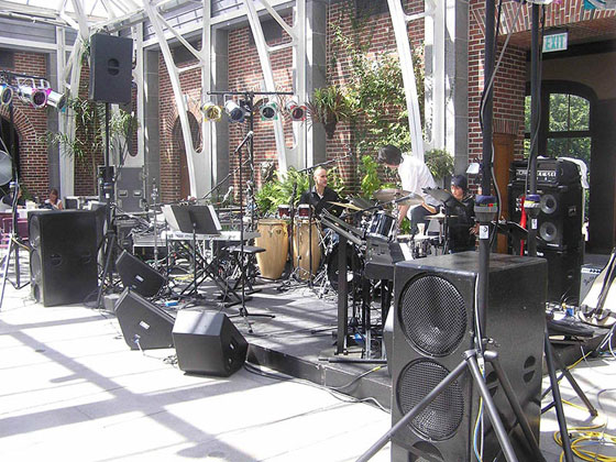 professional concert and sounds system set up